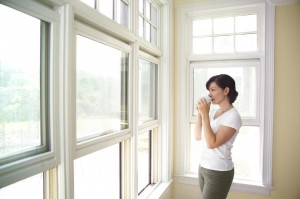 Domestic-Window-Cleaner
